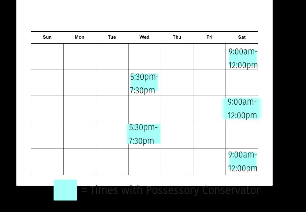 sole custody schedule texas
